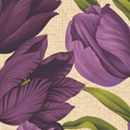 Large Tulips Purple